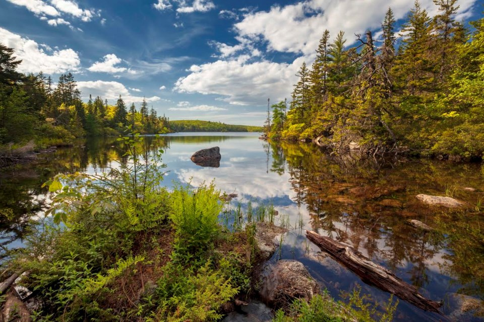 Looking down the length of Ash Lake on a beautiful late Spring day in the Blue Mountain- Birch Cove Lakes Wilderness Area in Halifax, Nova Scotia, Canada (Photo: Irwin Barrett)