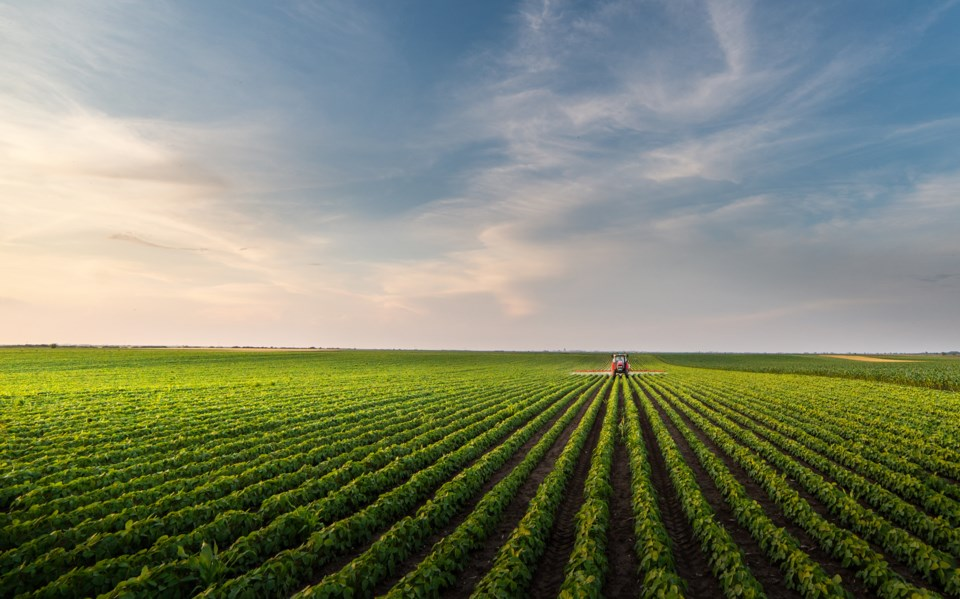 060420 -  farm agriculture fieldsAdobeStock_303214121