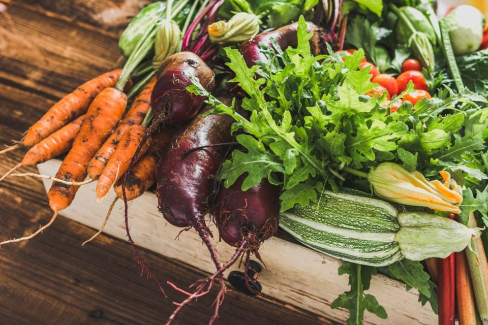 060420 - food harvest farm garden organic vegetables produceAdobeStock_218038929