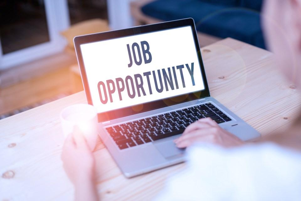 091520 - job search - career - AdobeStock_325128450
