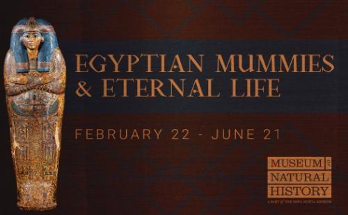 011720-Egyptian Mummies and Eternal Life