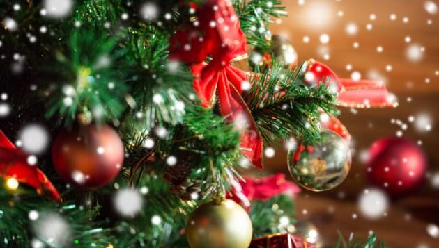 113018-christmas tree-AdobeStock_122831287