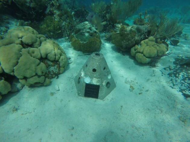 091819-living reef memorial