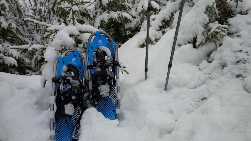 winter-snowshoe-1024x576