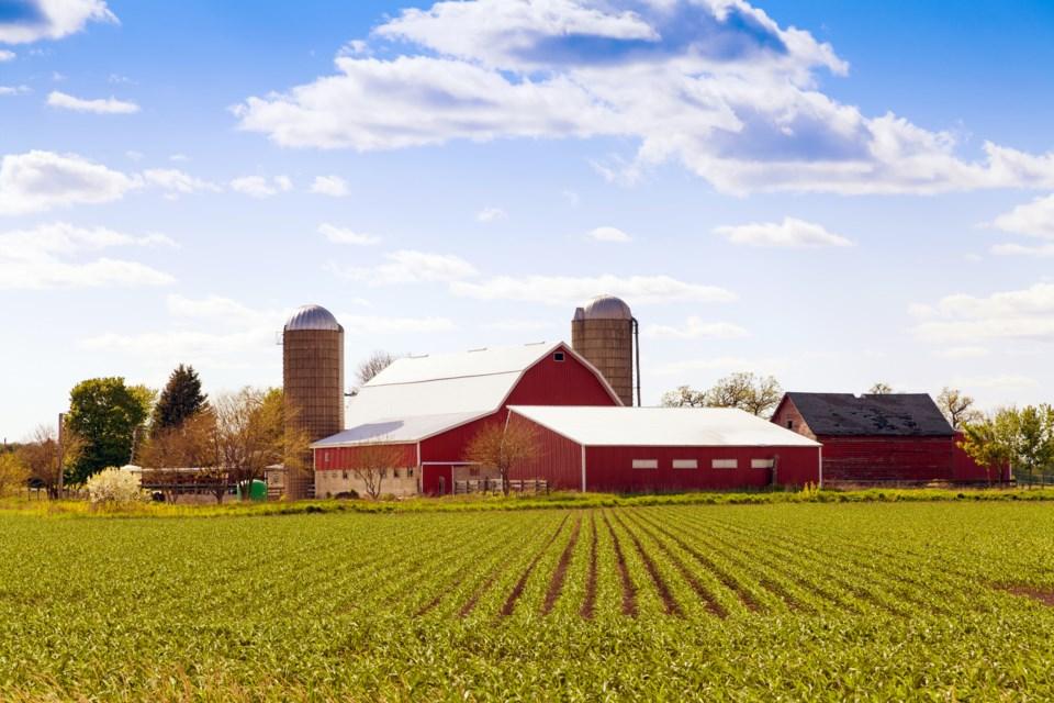 052418-barn-farm-farming-crops-field-agriculture-AdobeStock_52506248