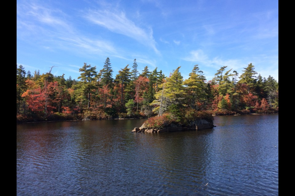 The Blue Mountain-Birch Cove wilderness area on an autumn day (Meghan Groff/HalifaxToday.ca)