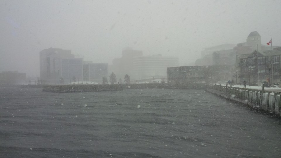 101317-snow ocean winter storm halifax harbour-MG