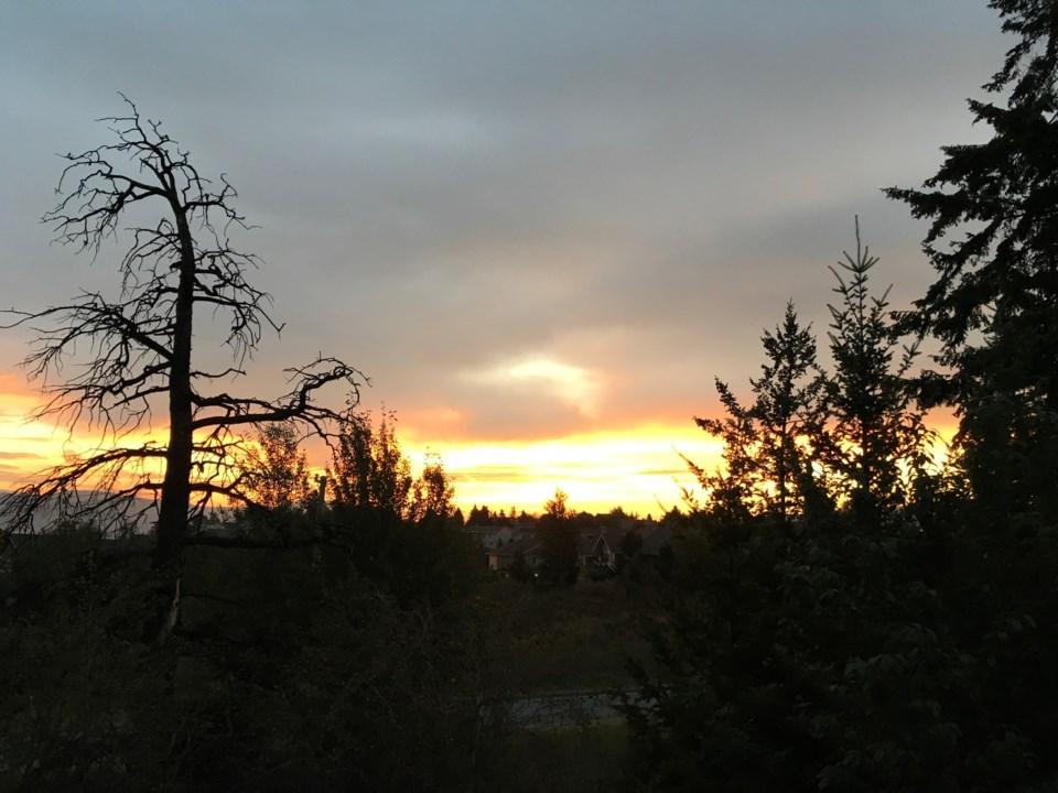 Sunrise Wendy Watters