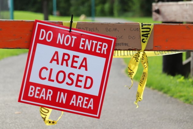 Area closed - Bears