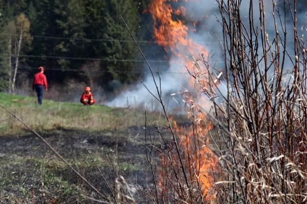 BC Wildfire3