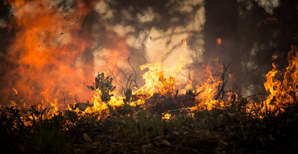 forest-fire-2268729_1280_Kamloops