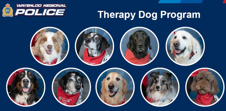 WRPS therapy dogs