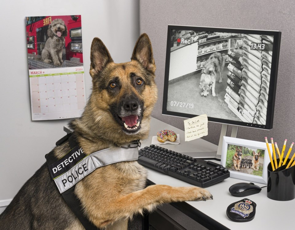 WRPS Canine Unit