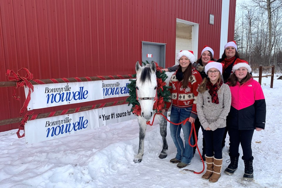 Attendees would have seen Puppin from Neighbours Ranch pulling an open sleigh for the Bonnyville Nouvelle float. Photo submitted.