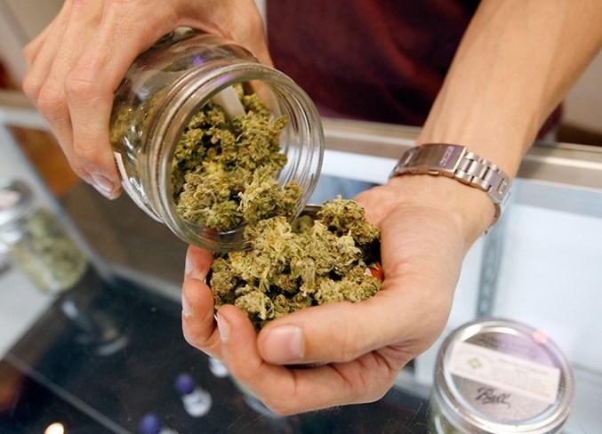 22.news.cl cannabis