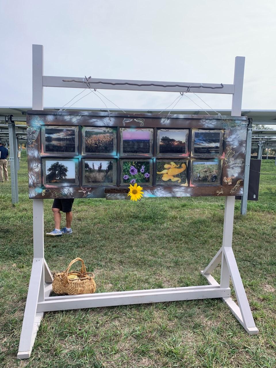 2021_02_20_LL_jacks_solar_garden_artist_residency2