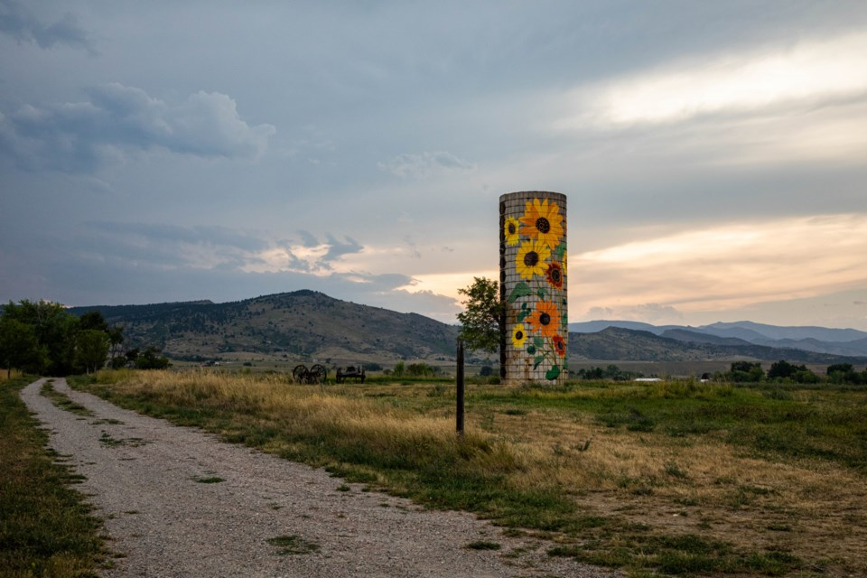 The sunflower silo painted by Don Faast hides amidst the foothills and farmland west of Longmont
