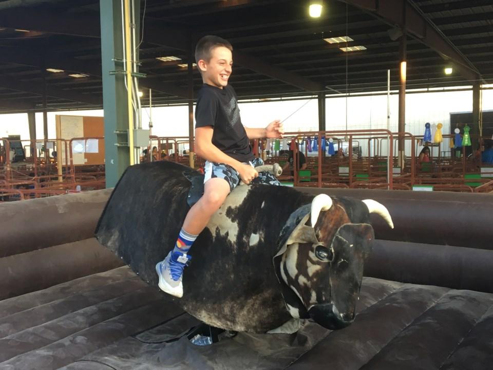 bull rider at boulder county fair