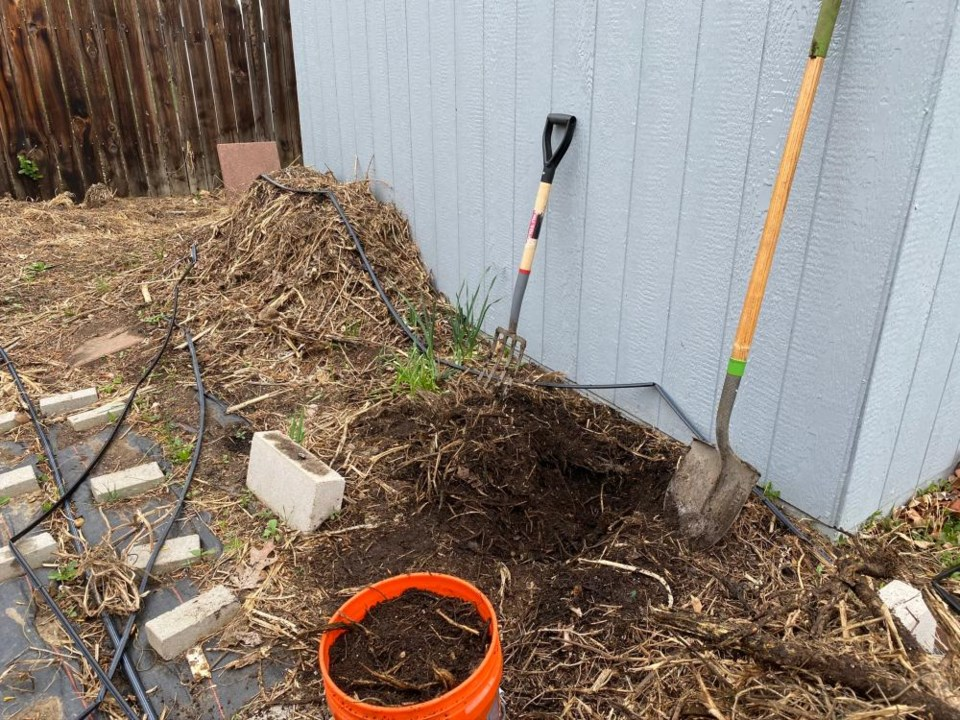 2021_01_30_LL_get_growing_compost_pile