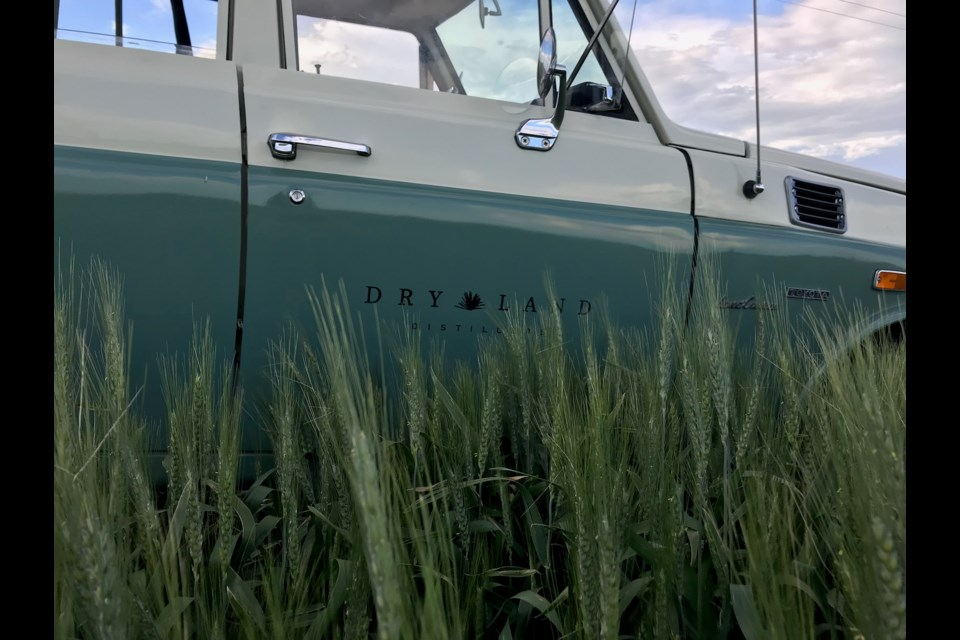 Dry Land's truck in front of the Antero wheat at Arnusch Farms