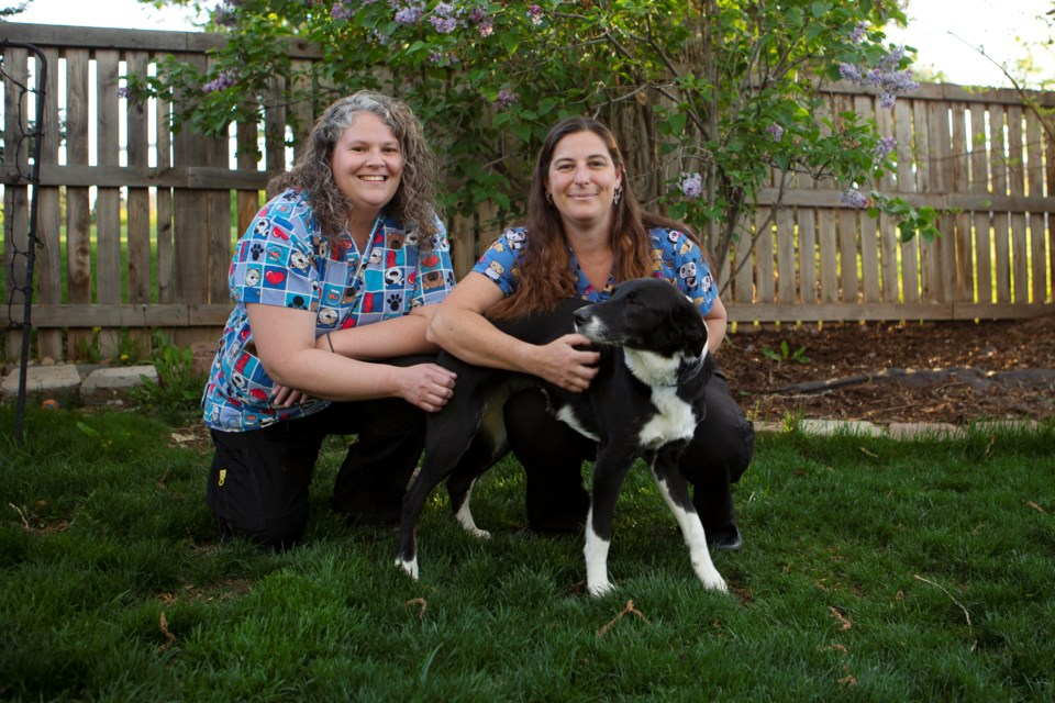 Peak to Peak Pet Services co-owners Kristie McFarland and Janette Fetter pose with Fetter's dog Suki at her Longmont home on May 19. The pet service brings vet techs to pet owners homes. Photo by Ali Mai   ali.mai.journo@gmail.com