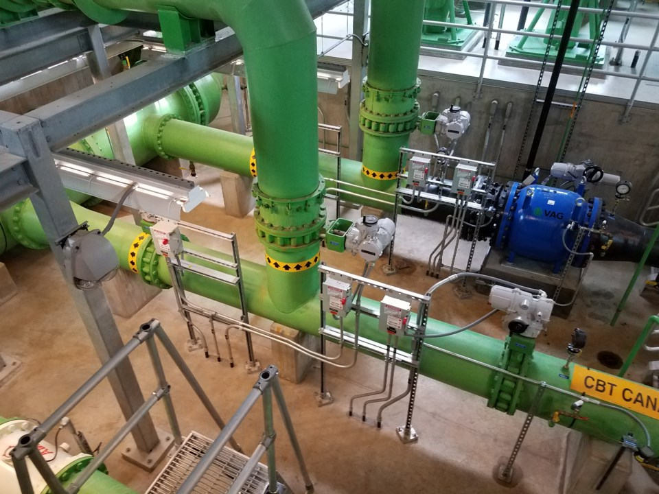 2020_09_22_LL_nelson_fladers_water_plant