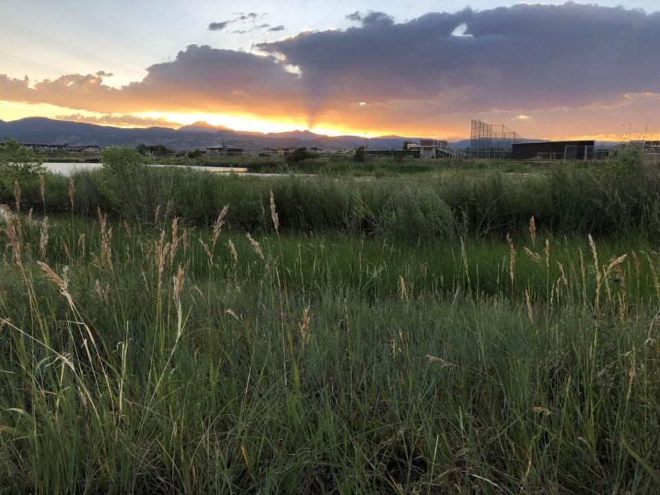 2020_07_08_LL_Dry_Creek_Park_sunset4