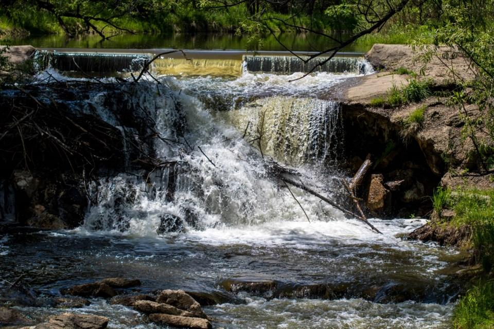 Golden Ponds (3 of 11)