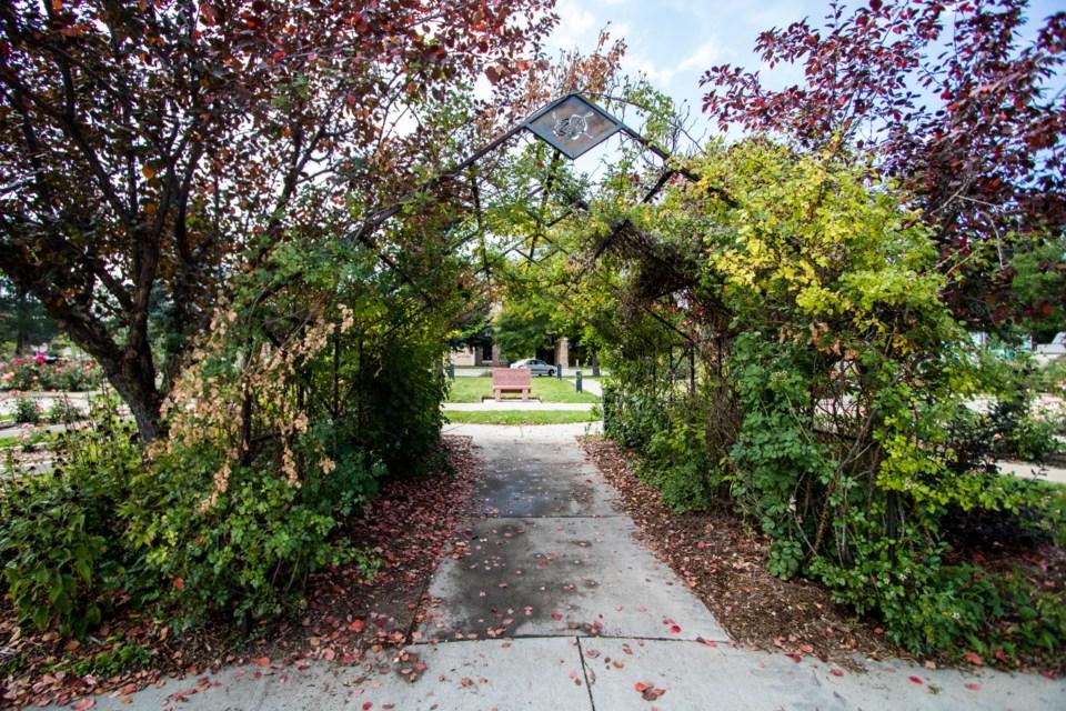 Roosevelt Park Rose Garden (2 of 5)