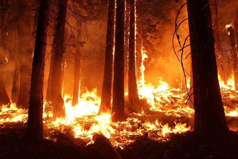 wildfire-1105209_1280