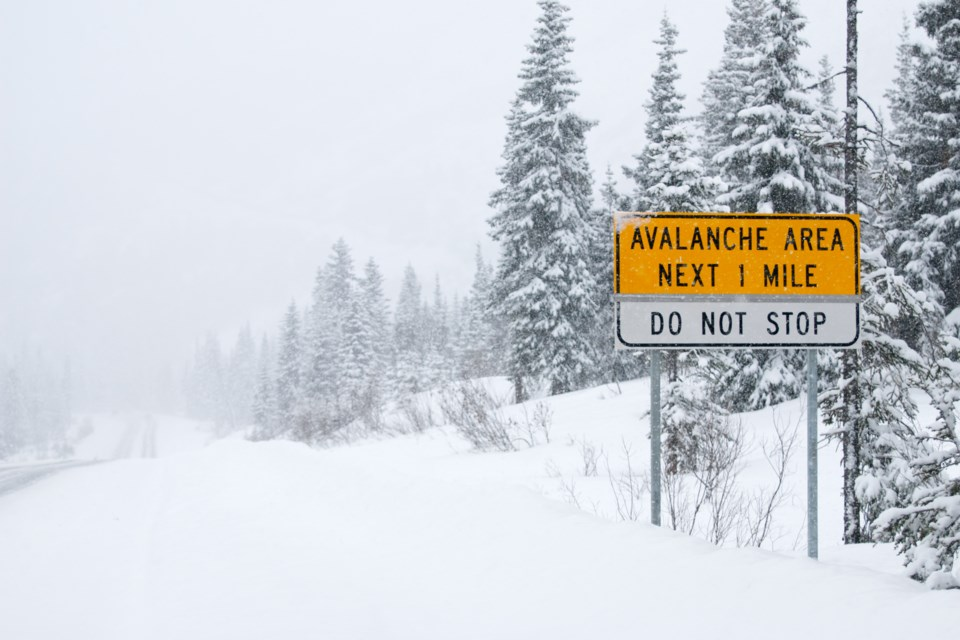 2020_09_24_LL_avalanche_area_stock