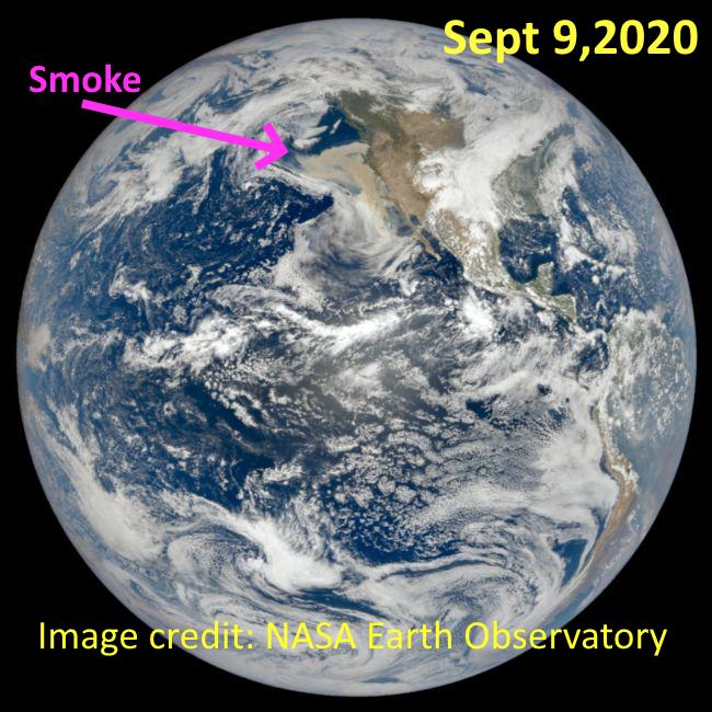 Figure1_09142020