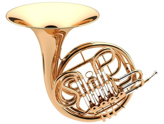 French horn 12112019