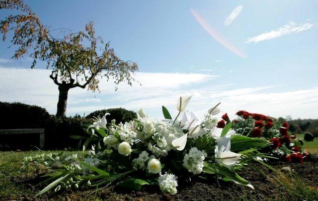 COVID deaths - AP