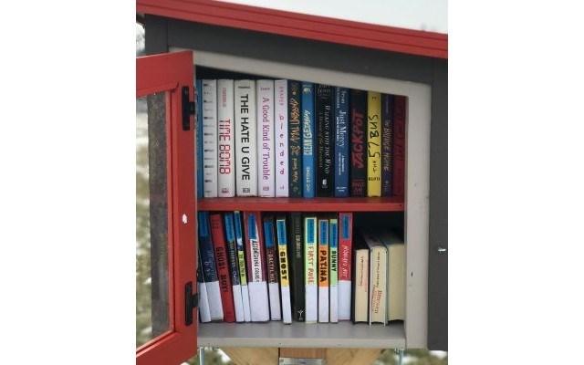 Little Free Library - Wean Park