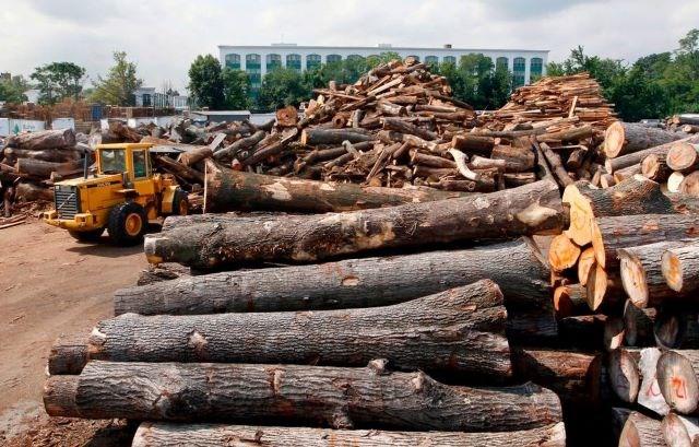 Lumber - AP
