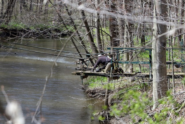 A worker for Murphy Contracting dismantles the old Mauthe Bridge in the Poland Municipal Forest. The project is expected to be completed mid-May. (Photo by Bob Yosay)