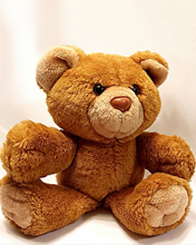 Teddy Bear for obits