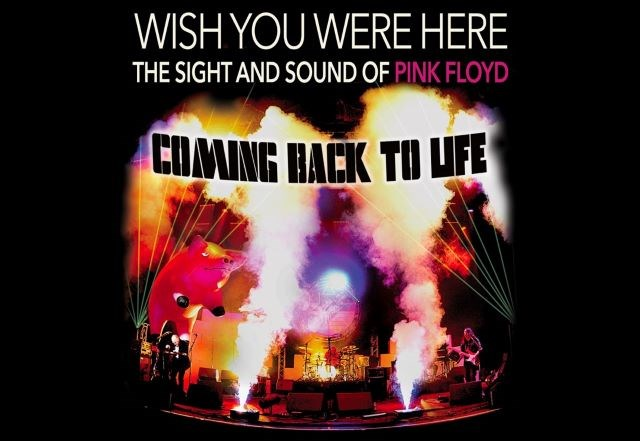 Wish You Were Here - Pink Floyd tribute