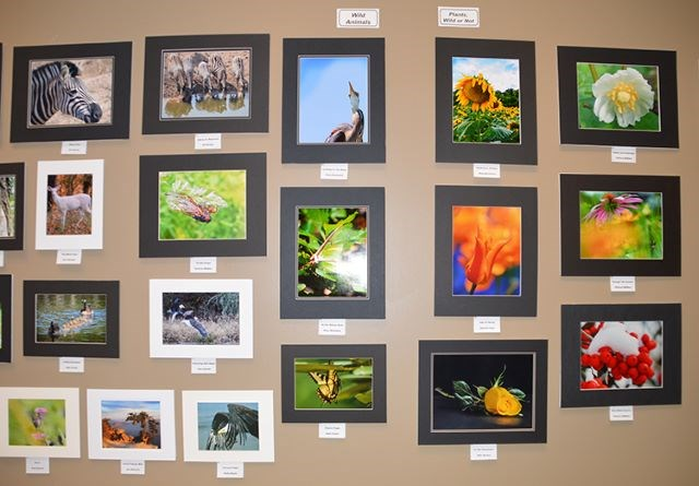 Nature Photography Exhibit_Mill Creek 02132020