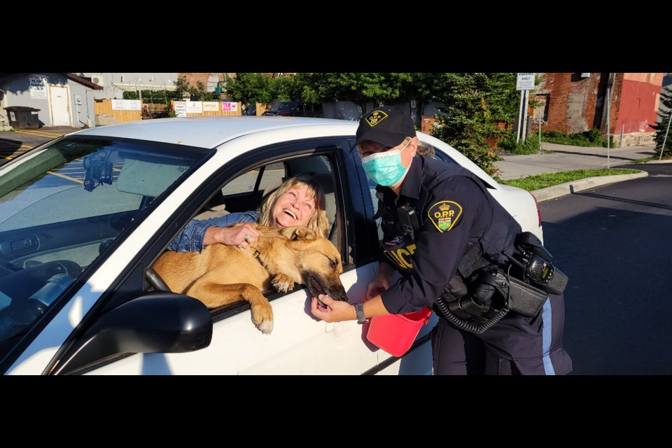 Southern Georgian Bay OPP Const. Debra Brown gives a treat to a happy pup during Tim Hortons Camp Day on Bay Street. One hundred per cent of proceeds from sales of hot coffee and iced coffee will be donated to Tim Hortons Foundation Camps today.