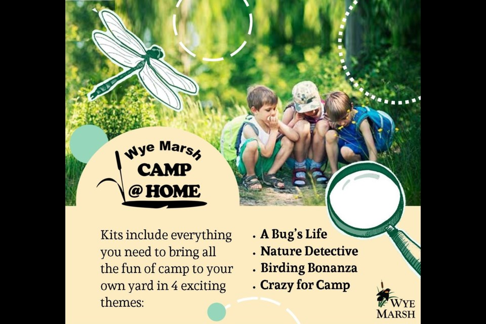 Wye Marsh Wildlife Centre has four different camp experiences kids can enjoy at home. Submitted photo