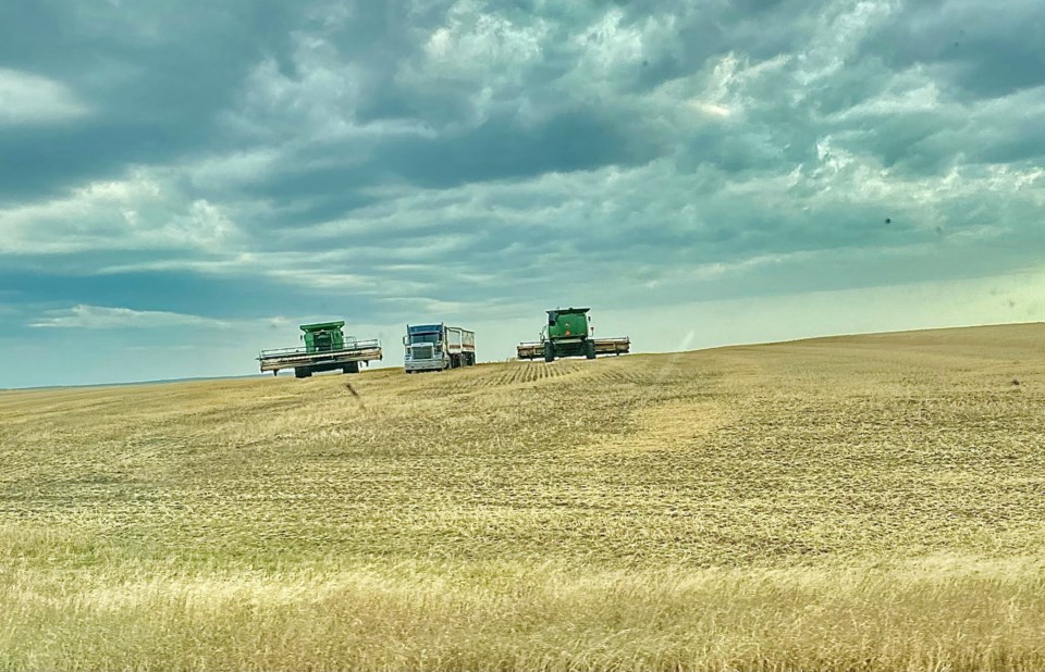 combines in field 2021 photo by eugenie officer