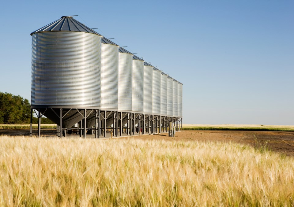 grain bins in field stock