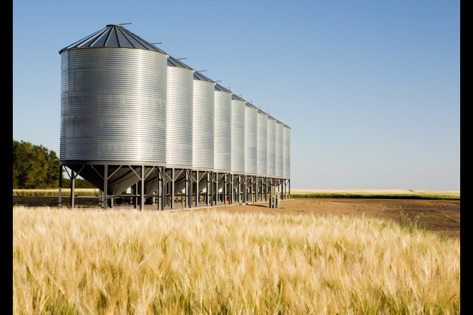 Saskatchewan farmers produced more than 30 million tonnes of crops during 2018. (Shutterstock)
