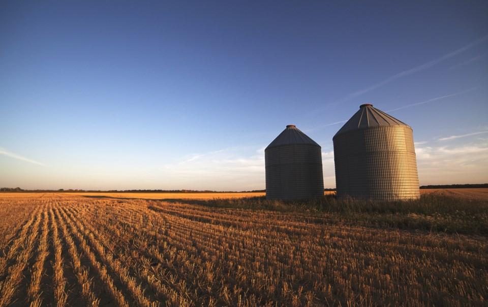 grain silos stock