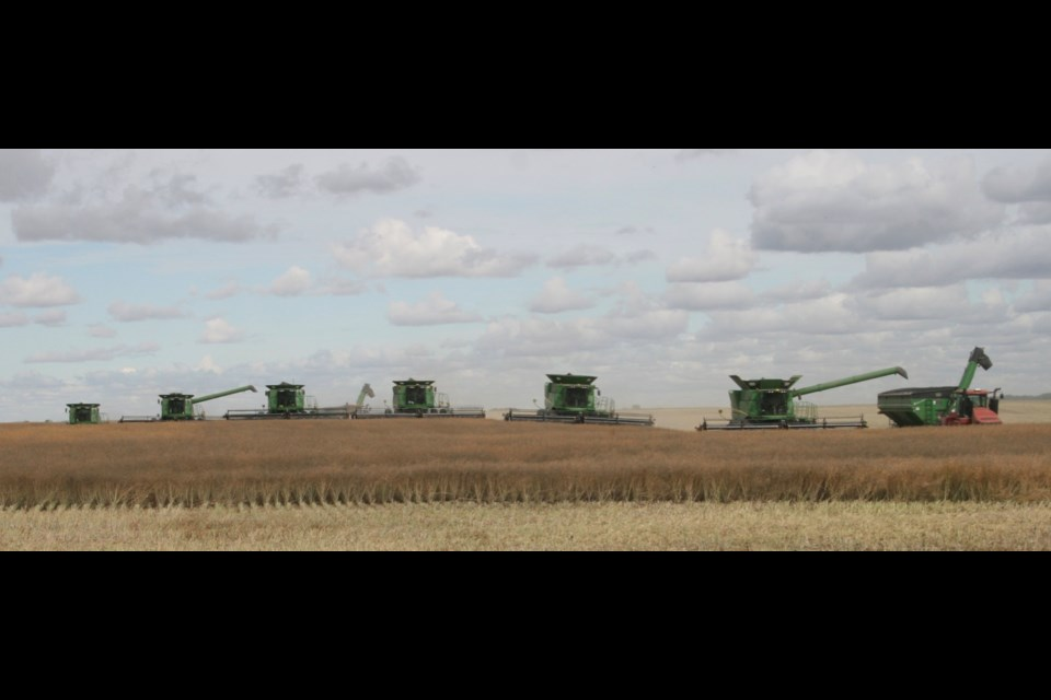 Six combines. Photo by Ron Walter