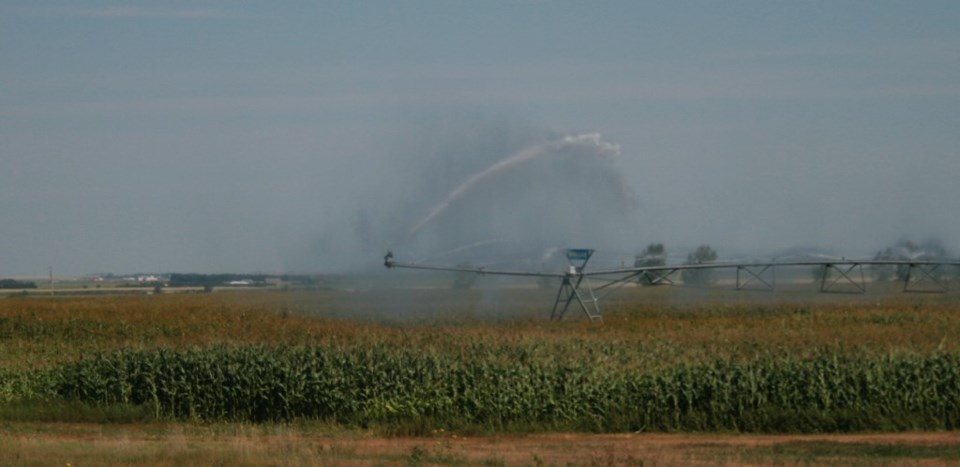 irrigation photo by ron walter summer 2021