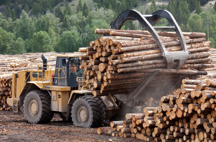 lumber industry getty images