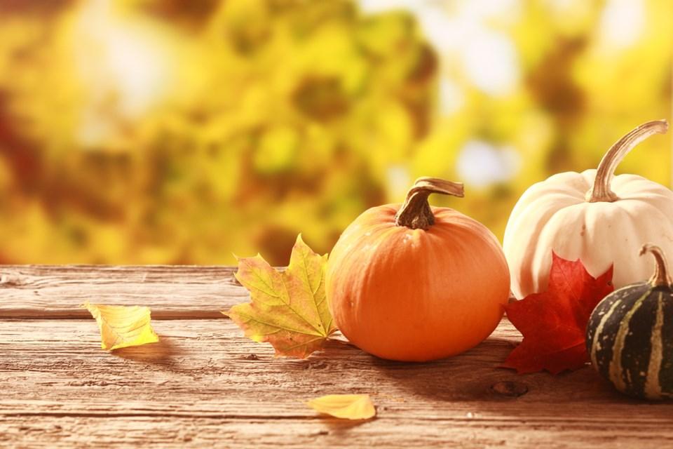 fall season pupmkin leaves shutterstock